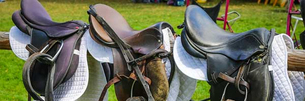 Guide for Training A Horse for The Race horse saddle - Guide for Training A Horse for The Race