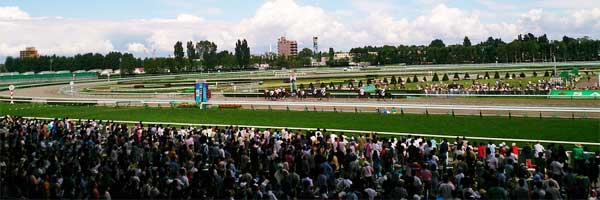 Effect of Tax Change on Horse Players horse racing - Effect of Tax Change on Horse Players